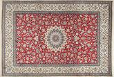 Nain 9La carpet XEA1780