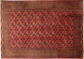 Turkaman tapijt AXVP679