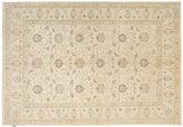 Ziegler carpet NAZD914