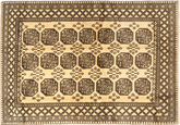 Afghan Natural teppe ABCX1459