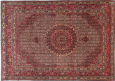 Moud carpet TBZZO277