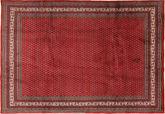 Sarouk Mir carpet TBZZO68