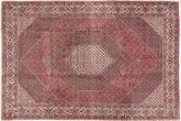 Bidjar carpet AXVZM16