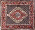 Senneh carpet AXVZL4528