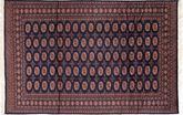 Pakistan Bokhara 2ply tapijt SHZA220
