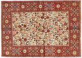 Rudbar carpet AXVZX3970