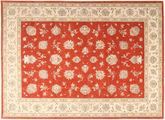 Tabriz carpet TBZZZI423