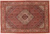 Bidjar carpet TBZZZIB34