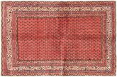 Sarouk carpet AXVZZX3037