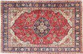 Tabriz carpet AXVZZX3108