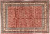 Sarouk carpet AXVZZX3080