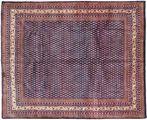 Sarouk carpet AXVZZX3064