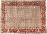 Moud carpet AXVZZZL460