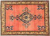 Afshar tapijt AXVZZZF5