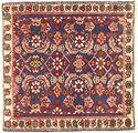 Tabriz carpet AXVZZZF1228