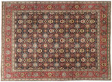 Tabriz Patina carpet AXVZZZO171