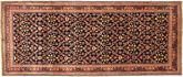 Arak szőnyeg AXVZZZO265
