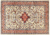 Kerman carpet AXVZZZW148