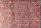 Arak carpet AXVZZZO452