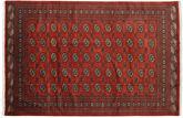 Pakistan Bokhara 2ply carpet RXZN438