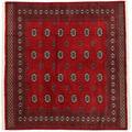 Pakistan Bokhara 2ply carpet RXZN460