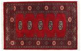Pakistan Bokhara 2ply carpet RXZN235