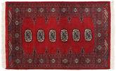 Pakistan Bokhara 2ply carpet RXZN234