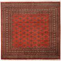 Pakistan Bokhara 2ply carpet RXZN489