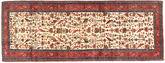 Rudbar carpet AXVZZZO316