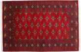 Pakistan Bokhara 2ply carpet RXZN403