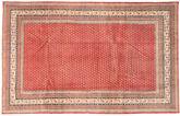 Sarouk carpet AXVZZZO409