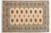 Pakistan Bokhara 2ply tapijt RXZN367