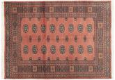 Pakistan Buchara 2ply Teppich RXZN362