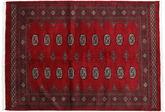 Pakistan Buchara 2ply Teppich RXZN341
