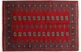 Pakistan Buchara 2ply Teppich RXZN343