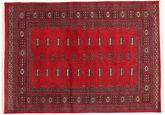 Pakistan Bokhara 2ply tapijt RXZN348