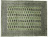 Pakistan Bokhara 2ply carpet RXZN261