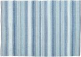 Wilma - Blue carpet CVD20330