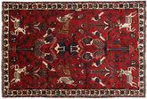 Shiraz carpet RXZO62