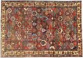 Bakhtiari carpet AXVZZZZQ1249