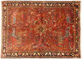 Bakhtiar szőnyeg AXVZZZZQ627