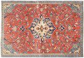 Sarouk carpet AXVZZZZQ1066