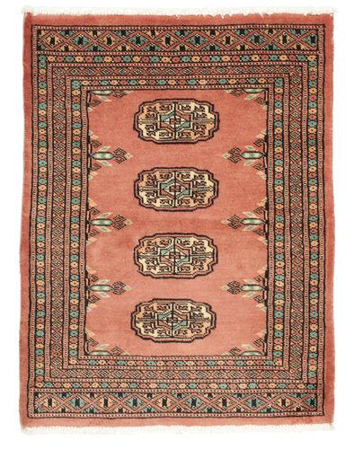 Pakistan 2ply carpet NAE849