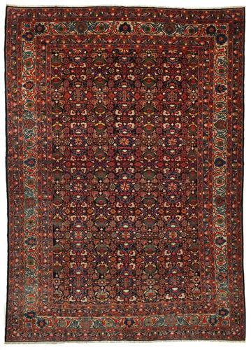 Bakhtiar tapijt VEXD5
