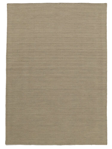 Kilim loom - Light Grey / Beige rug CVD9099