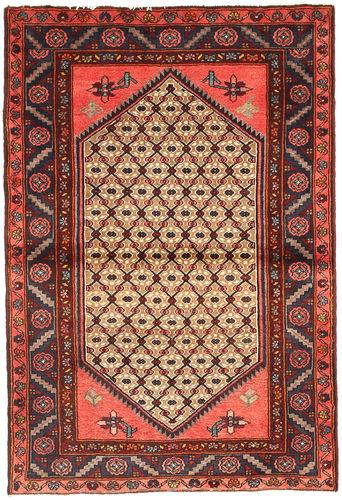 Koliai carpet XVZZE252
