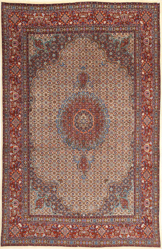 Moud carpet FAZA305