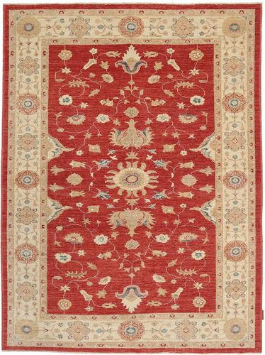 Ziegler carpet NAZC1036
