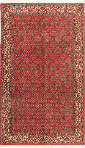 Bidjar carpet AXVZL114