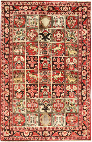 Sarouk carpet AXVZL4643